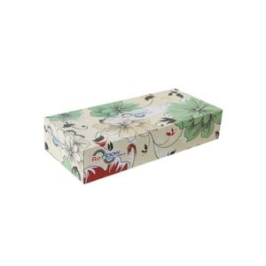 0142318 rainbow facial tissue 200 sheet 11 300